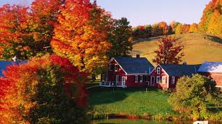 COLORFUL AUTUMN LEAVES POEMS AND QUOTES - BY HAPPY TWIRL