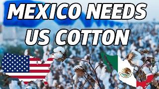 Commodity no México PósNAFTA