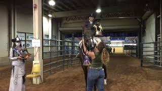 2020 AQHA Youth 14-18 Hunter Under Saddle