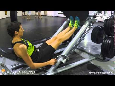 La flexibilidad de los músculos y las articulaciones