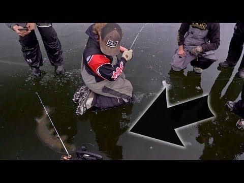 En stor fisk under isen