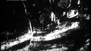 Banarasi Thug (1965) Yaad Suhaani Teri Bani Zindagaani