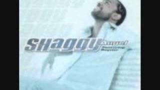 Eminem & Shaggy - Eye of the tiger