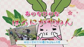 【あのなひのなほろにがやねん】桜谷小学校で収穫されるねんの巻