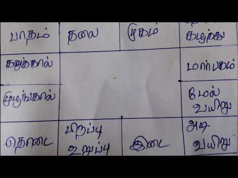 Learn astrology in tamil youtube clip