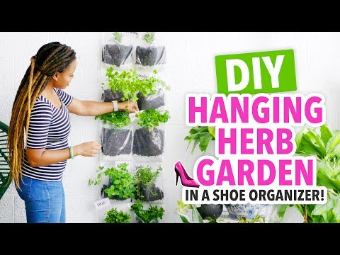 DIY Indoor Herb Garden in a Shoe Organizer! – HGTV Handmade