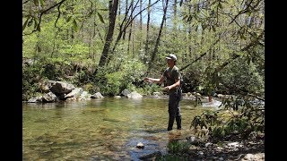 Small Stream Trout Fishing! (North Carolina)