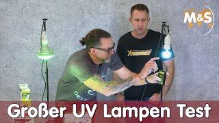 Günstig vs. Teuer, lohnt sich das? | Der große UV Lampen Test bei Reptil TV | Teil 1