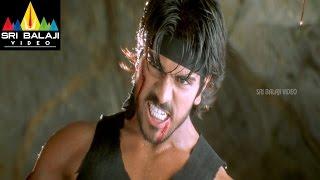 Chirutha Telugu Movie Part 12/12   Ram Charan, Neha Sharma   Sri Balaji Video