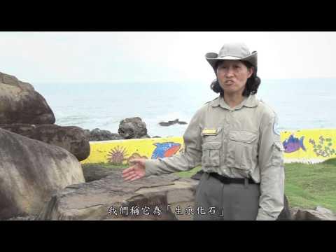 [行動解說員]墾丁國家自然公園-佳樂水風景區