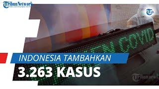 Kasus Positif Indonesia Bertambah 3.263 Kasus, Kematian Harian di Bali Tertinggi Hari Ini