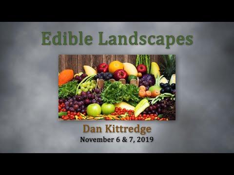 , title : 'Dan Kittredge BSC Nov 2019 Part 1   Principles of Biological Systems  vo2