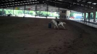 Gray Appendix Barrel Racing Quarter Horse For Sale NC GA TN - Winning 2D Times