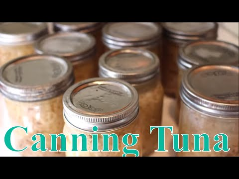 Canning Wild Caught Albacore Tuna With  Linda's Pantry
