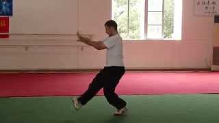 preview picture of video 'Aprendiendo Dragón de Xing Yi Quan'