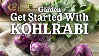 How to Get Started Growing Kohlrabi | Sowing Kohlrabi