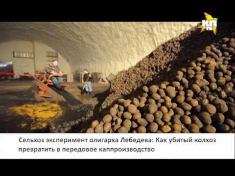 Как Александр Лебедев стал картофельным магнатом