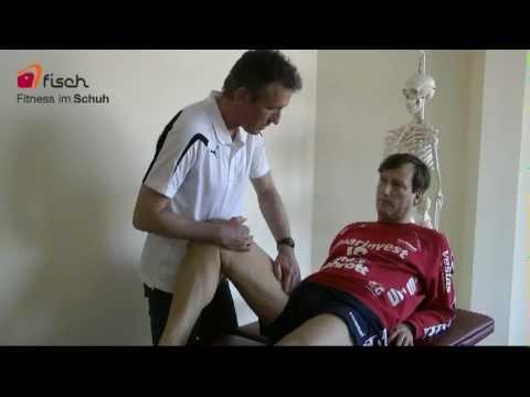 Apitherapie und Osteochondrose