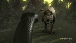 Tyrannosaurus Rex vs Titanoboa - Full Fight [Epic Battle, HD]
