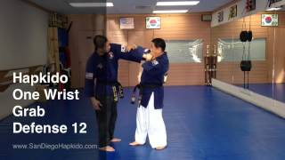 Hapkido One Wrist Grab Defense 12