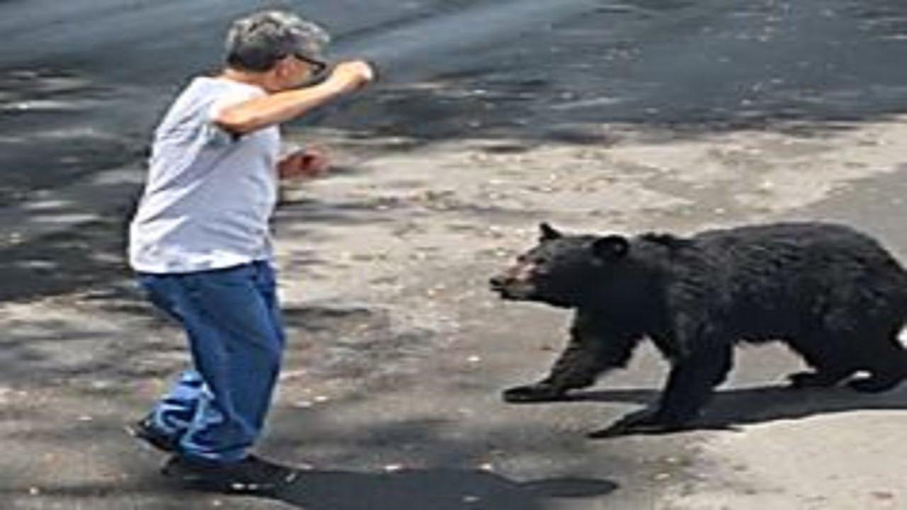MAMA BEAR ALERT