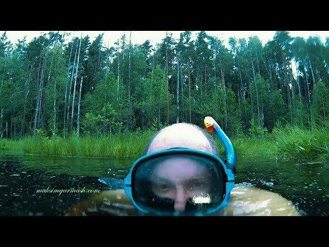 Погружение на тайном черном лесном озере