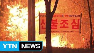 축구장 면적 735배 잿더미...고성·강릉 산불 주불 진화 / YTN