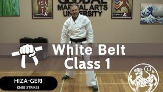 Shotokan Karate Follow Along Class - 9th Kyu White Belt - Class #1
