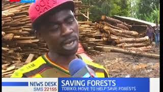 CS Keriako Tobiko extends ban on logging