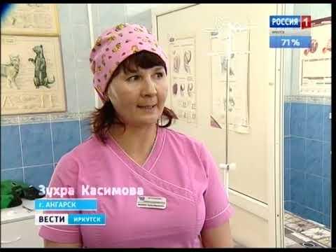 Выпуск «Вести-Иркутск» 13.11.2018 (21:44) онлайн видео