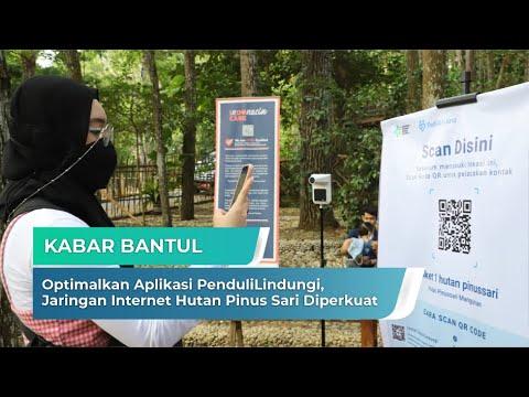 Optimalkan Aplikasi PenduliLindungi, Jaringan Internet Hutan Pinus Sari Diperkuat | Kabar Bantul