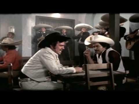 Vicente Fernández  solo para borrachos mix 503