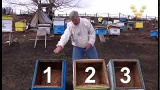 Смотреть онлайн Правильная дезинфекция пчелиного улья весной