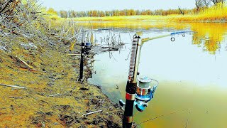 Lineage 2 что дает рыбалка отменена