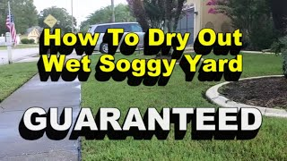 Wet Soggy Yard?