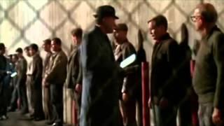 Gattaca (1997) Video