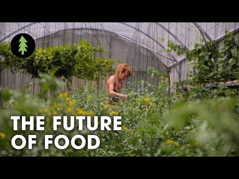 , title : 'Organic Regenerative Farming is the Future of Agriculture | The Future of Food
