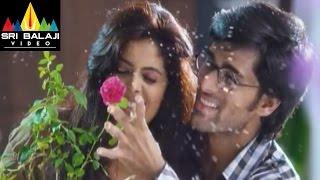Love You Bangaram Telugu Movie Part 4/12  Rahul Shravya  Sri Balaji Video