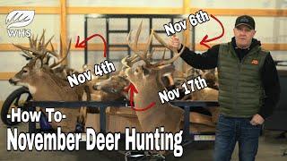November Deer Hunting Rules