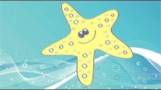 Cómo dibujar una estrella de mar. Dibujos infantiles