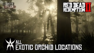 RDR2 All Exotic Orchid Locations For Exotics Quest in Red Dead Redemption 2