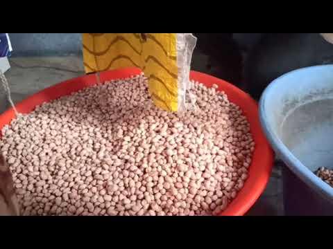 GENN GXM-Series Peanut Sorting Machine