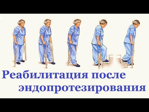 Болит грудной отдел позвоночника и тошнит