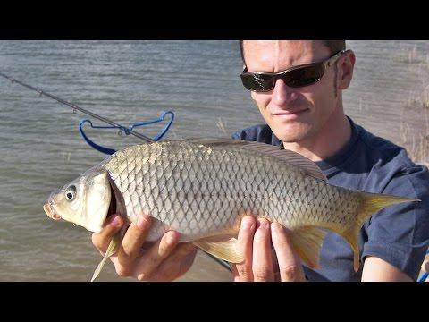 Lago dvinye pesca di regione di Pskov