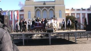 Dunaszekcsői táncok a Busójáráson