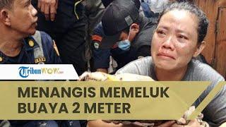 Dianggap Meresahkan, Buaya Milik Warga di Jakarta Dievakuasi Petugas, Pemilik Menangis Memeluk Buaya