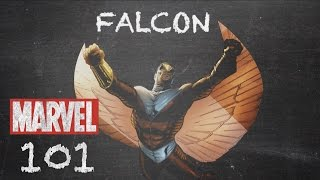 From a Bird's Eye View - The Falcon