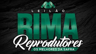Rima a4792