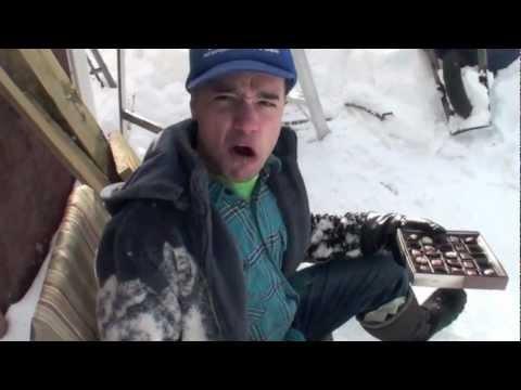 Newfoundlander vs A Saucy Tucker