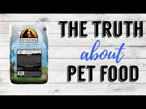 The Truth about Pet Food | Pazuandfriends
